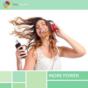 Indre power